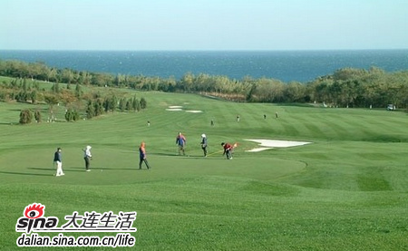 金湾高尔夫球场